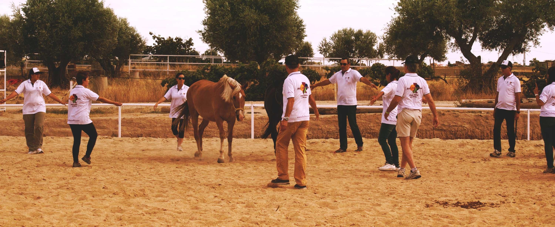 Biel-mcmillan-coaching-asistido-caballos
