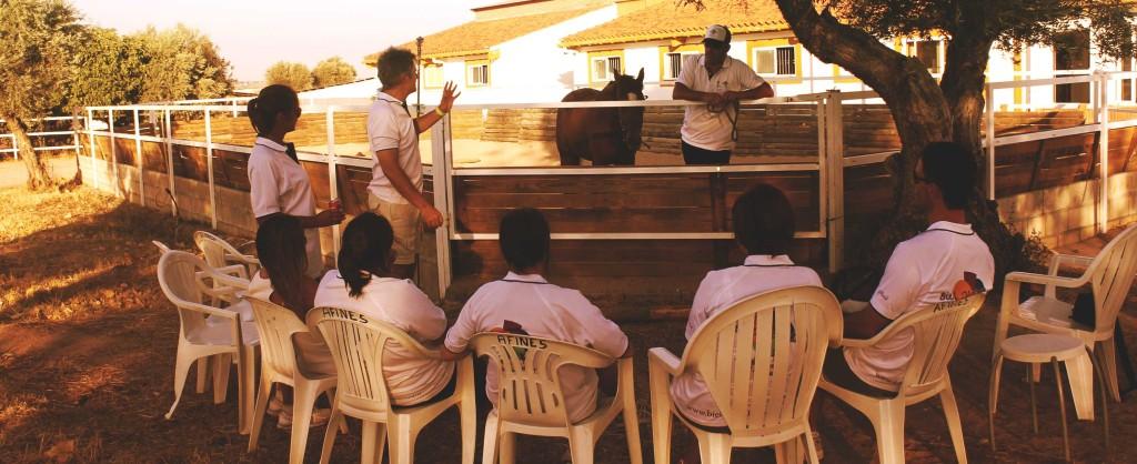 Biel-mcmillan-coaching-asistido-caballos4